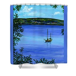 Overlooking The Hudson Shower Curtain by Anne Marie Brown