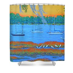 Overnight In Beaufort Shower Curtain by Dwain Ray