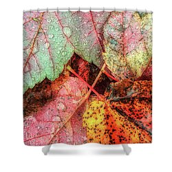 Overnight Rain Leaves Shower Curtain by Todd Breitling