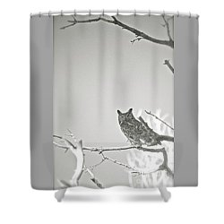 Owl Be Seeing You Shower Curtain