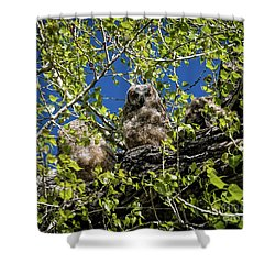 Owl Be With You In A Moment Shower Curtain