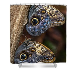 Shower Curtain featuring the photograph Owl Butterflies by Jerry Cahill