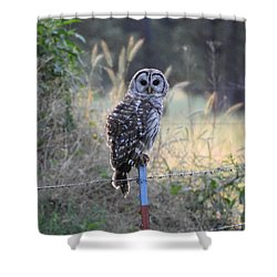 Owl Cherish This Moment Forever Shower Curtain by Roxanne Raber