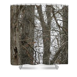 Owl In Camouflage Shower Curtain