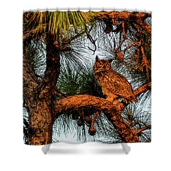 Owl In The Very Last Sunset Light Shower Curtain