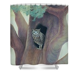 Owl In Tree Shower Curtain