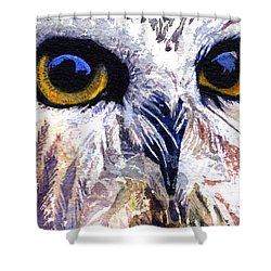 Owl Shower Curtain by John D Benson