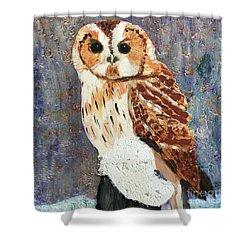 Owl On Snow Shower Curtain