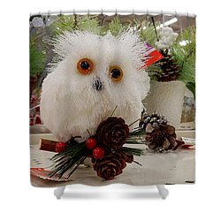 Owl On The Shelf Shower Curtain by Betty-Anne McDonald