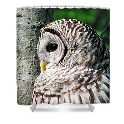 Owl Profile Shower Curtain