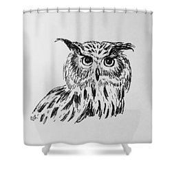 Owl Study 2 Shower Curtain by Victoria Lakes