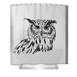 Shower Curtain featuring the drawing Owl Study 2 by Victoria Lakes