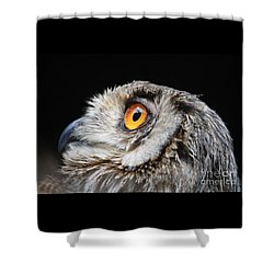 Owl The Grand-duc Shower Curtain