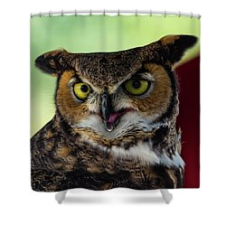 Owl Tongue Shower Curtain