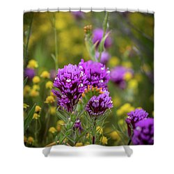 Shower Curtain featuring the photograph Owl's Clover by Peter Tellone