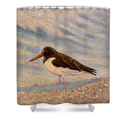 Shower Curtain featuring the painting Oyster Catcher by Joe Bergholm