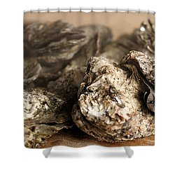 Oyster Roast Shower Curtain by Greg Simmons
