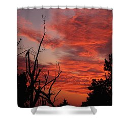 Shower Curtain featuring the photograph Ozark Dawn by Michael Dougherty