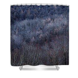 Ozark Trees #3 Shower Curtain