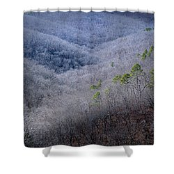 Ozarks Trees #4 Shower Curtain