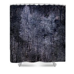 Ozarks Trees #6 Shower Curtain