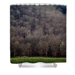 Ozarks Trees Shower Curtain