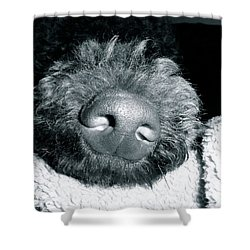 Bodhi Nose Shower Curtain