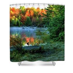 Pa 4018 Shower Curtain by Scott McAllister