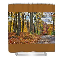 Pa Country Roads - Autumn Colorfest No. 3 - Fire In The Woods - Northumberland County Shower Curtain by Michael Mazaika