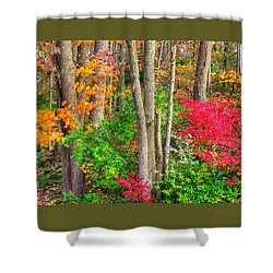 Pa Country Roads - Autumn Flourish - Harmony Hill Nature Area - Chester County Pa Shower Curtain by Michael Mazaika