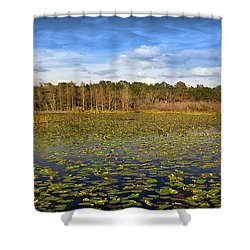 Pad City Shower Curtain