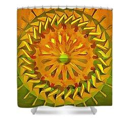Shower Curtain featuring the digital art Paddlewheel Mandala by Mario Carini