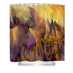 Pagami Fading Shower Curtain