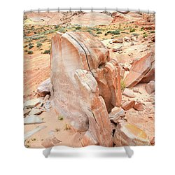 Shower Curtain featuring the photograph Pages Of Stone In Valley Of Fire by Ray Mathis