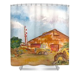Paia Mill 3 Shower Curtain