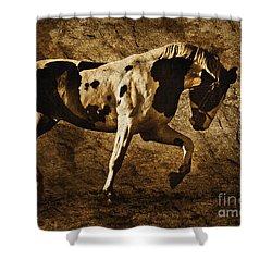 Paint Horse Shower Curtain