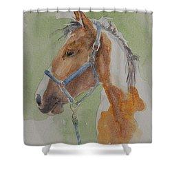 Paint I Shower Curtain by Gretchen Bjornson