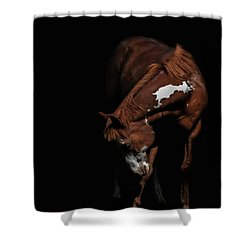 Paint In Black II Shower Curtain