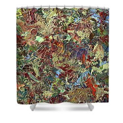 Paint Number 21 Shower Curtain by James W Johnson