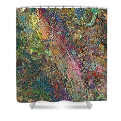 Paint Number 27 Shower Curtain by James W Johnson