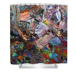 Paint Number 42-c Shower Curtain by James W Johnson