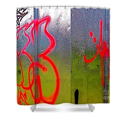 Paint Shed Shower Curtain