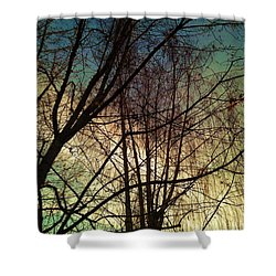 Paintbrush 5 Shower Curtain