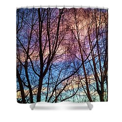 Paintbrush IIi Shower Curtain