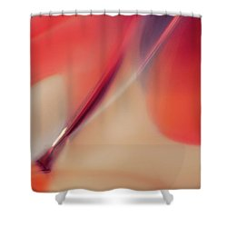 Paintbrush Shower Curtain by Omaste Witkowski