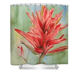 Paintbrush Portrait Shower Curtain
