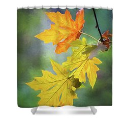 Painted Autumn Leaves Shower Curtain