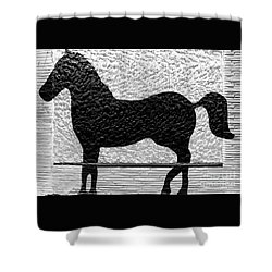 Shower Curtain featuring the photograph Painted Black - Stone Pony by Colleen Kammerer
