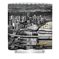 Painted Bridges  Shower Curtain