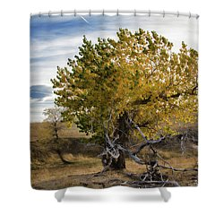 Painted By Nature Shower Curtain by Alana Thrower